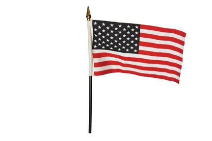 3_US Flag.png